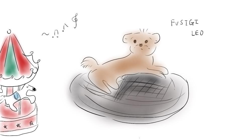 子犬のヘルツ