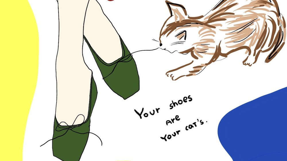 Your shoes are your Cat's.